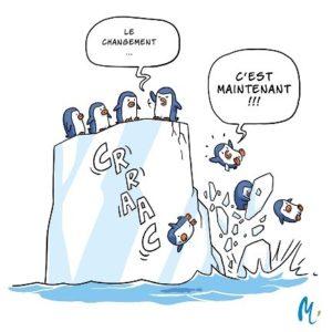 Illustration Méli Mélo - démêlons les fils de l'eau